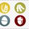 Aşılamanın Truva Atı – Gıda Alerjileri