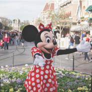Amerika Disneyland'de Hak ve Özgürlüklerini Kaybetti, Hükümsüzdür!